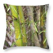 Bamboo I Poster Look Throw Pillow