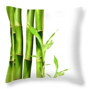 Bamboo Shoots Stacked Side By Side Throw Pillow by Sandra Cunningham