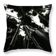 Bamboo Skies 3 Throw Pillow