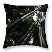 Bamboo Skies 4 Throw Pillow