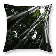 Bamboo Skies 6 Throw Pillow
