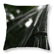 Bamboo Skies 8 Throw Pillow