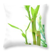Bamboo Stems And Leaves Throw Pillow