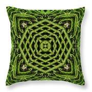 Bamboo Symmetry Throw Pillow