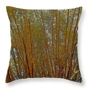 Bamboo Trees In Manuel Antonio National Preserve-costa Rica Throw Pillow