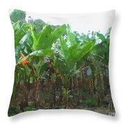 Banana Field Throw Pillow