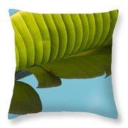 Banana Leaf And Maui Sky Throw Pillow