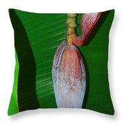 Banana Tree Bud Throw Pillow