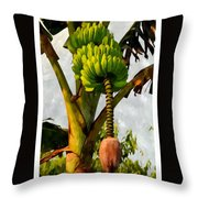 Banana Trees With Fruits And Flower In Lush Tropical Garden Throw Pillow