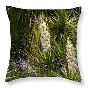 Banana Yucca   #0533 Throw Pillow