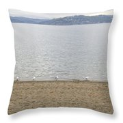 Band Of Birdies Throw Pillow
