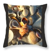 Banded Tulip 1 Throw Pillow