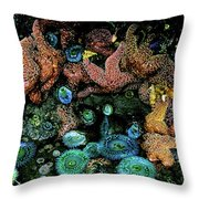 Bandon Beach Oregon Pacific Tidal Pool Throw Pillow