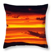 Bands Of Gold Throw Pillow