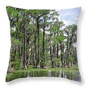 Banks Lake Georgia Throw Pillow