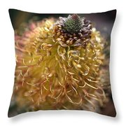 Banksia  Throw Pillow