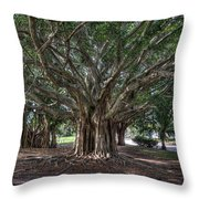 Banyan Tree Reaching For The Sky Throw Pillow