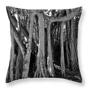 Banyan Trees Throw Pillow
