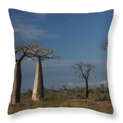 baobab parkway of Madagascar Throw Pillow