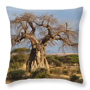 Baobab Tree Ruaha Np Tanzania Throw Pillow