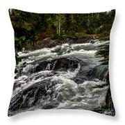 Baranof River Throw Pillow