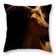 Barbary Sheep Portrait Throw Pillow by Lourry Legarde