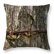 Barbed Wire Rustic Twist Throw Pillow