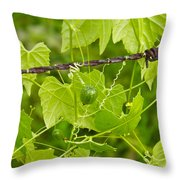 Barbwire And Vine Throw Pillow