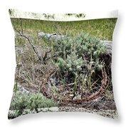 Barbwire Wreath 2 Throw Pillow