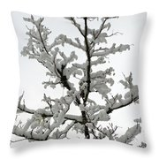 Bare Branches With Snow Throw Pillow