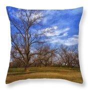 Bare Pecan Trees Throw Pillow