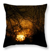 Bare Tree Branches With Winter Sunrise Throw Pillow