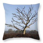 Bare Tree In Forest Throw Pillow