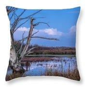 Bare Tree In Marsh Throw Pillow