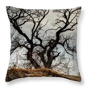 Bare Tree On The Hill Throw Pillow