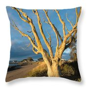 Bare Tree On The Spit Throw Pillow