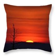 Bare Tree Sunrise Throw Pillow