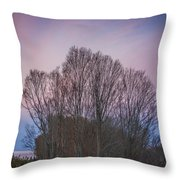 Bare Trees And Autumn Sky Throw Pillow