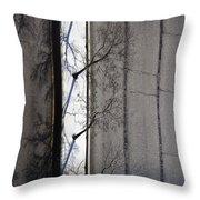 Bare Trees Throw Pillow