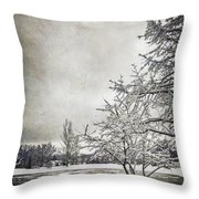 Barely Frozen Throw Pillow