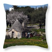 Bari 1 Throw Pillow