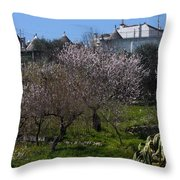 Bari 2 Throw Pillow