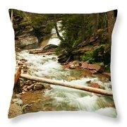Baring Falls Throw Pillow