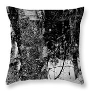 Bark And Trees In Winter Throw Pillow
