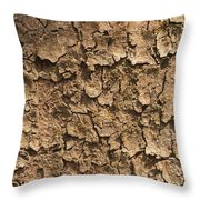 Bark Of A Tree Throw Pillow