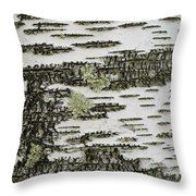 Bark Of Paper Birch Throw Pillow