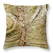 Bark Of Silk Floss Tree Background Texture Pattern Throw Pillow