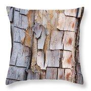 Bark On A Tree In The Desert In Sedona Throw Pillow