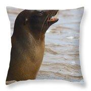 Barking Sealion Throw Pillow