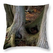 Barky Barky Trees Throw Pillow